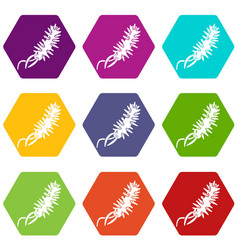 E coli bacteria icons set 9 vector