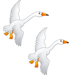 flying swan high quality color vector image