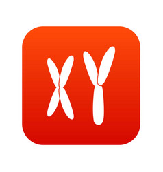 Human chromosomes icon digital red vector