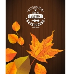 Natural background with wooden board and leaves vector
