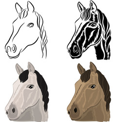 a set of drawings of a horse head vector image vector image