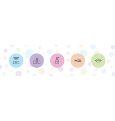 5 skin icons vector