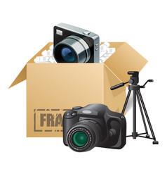 box 06 vector image