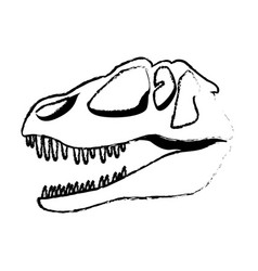 Dinosaur skull predator ancient fossil vector