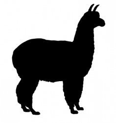 Silhouette of alpaca vector