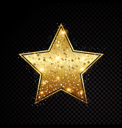 star frame shining isolated on black vector image