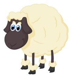 Cartoon adorable sheep vector