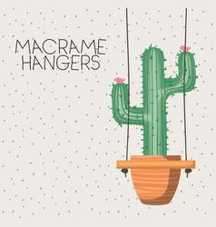 Cactus houseplant in macrame hangers vector
