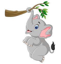 cartoon funny elephant playing on a tree branch vector image