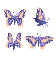 collection blue butterflys on white background vector image