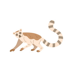 Cute and funny lemur with striped long tail raised vector