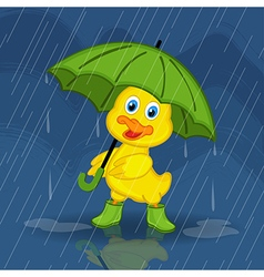 Duckling hiding from rain under umbrella vector