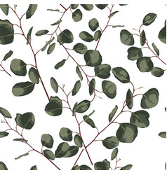 floral seamless pattern with eucalyptus vector image