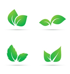 Green leaf icons vector image