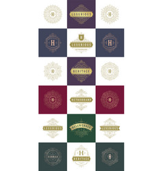 luxury logos templates set flourishes vector image