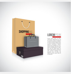 shopping bags with shoes box isolated on white vector image