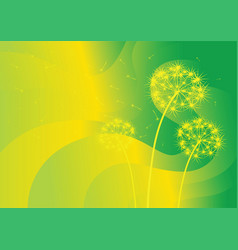 Three dandelions on abstract background vector