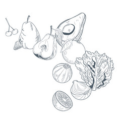 vegetables and fruits falling hadn draw vector image