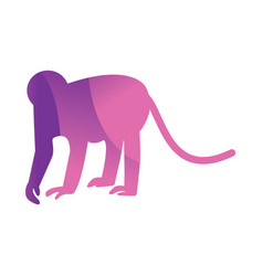Wild monkey animal jungle logo silhouette of vector