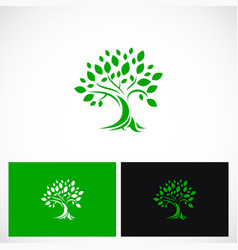 green tree ecology botany logo vector image