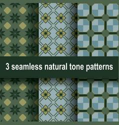 3 natural tone patterns vector image