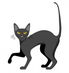 cat illustration vector image