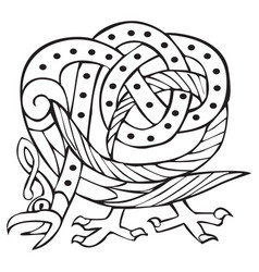 Celtic design with knotted lines of a bird vector