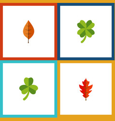 Flat icon maple set of frond leafage leaf and vector