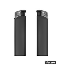 photo-realistic lighter vector image