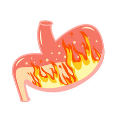 pyrosis stomach medical fire inside vector image