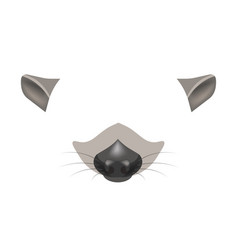 raccoon animal face filter template video chat vector image