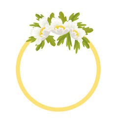 round frame decorated by white anemone flowers vector image