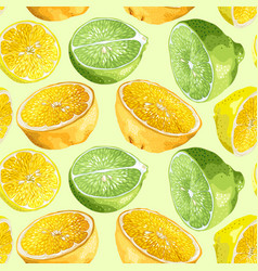 Seamless pattern with citrus tree fruits like vector