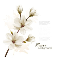 Spring background with blossom brunch of white vector