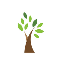 tree icon design template isolated vector image