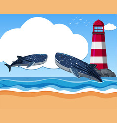 Two whale sharks in the ocean vector