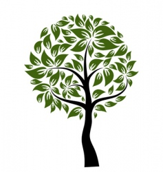decorative tree vector image vector image