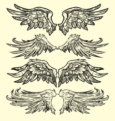 wings hand drawn vector image