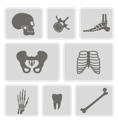 set of monochrome icons with human bones vector image vector image