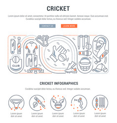 banner cricket vector image