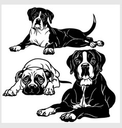 Boxer dog - set isolated on vector