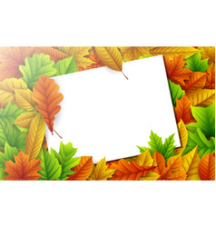 colorful autumn leaves with blank paper card vector image