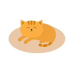 Cute orange cat lying sleeping on oval carpet rug vector image