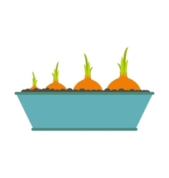 Onions flat icon vector image