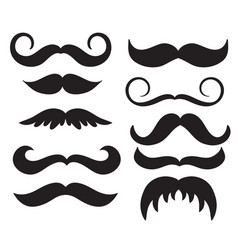 set of vintage mans mustache calligraphy vector image