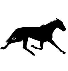 silhouette of black mustang horse vector image