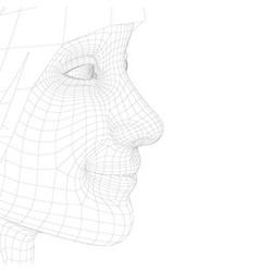 wireframe a girl head with a smile model a vector image