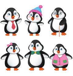 Of penguin family vector