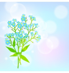 Card with forget me not flower vector image