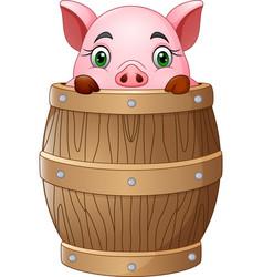 Cartoon little pig in barrel vector